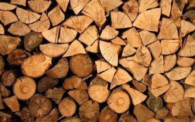 Despre lemnele de foc